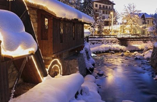 Snowbary Tonale